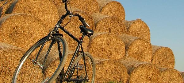 rowerowa-sobota-rower-siano-600x270